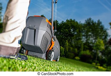 Summer Lawn Mowing