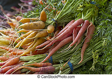 Fresh Picked Carrots in Vegetable Stand at Farmers Market