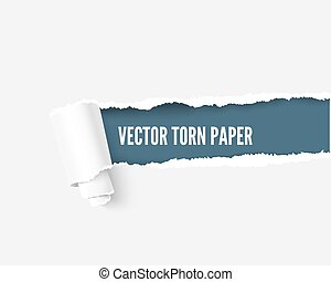 Torn paper with space for your message, realistic vector illustration