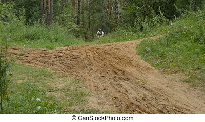 Cyclist rides through the forest, overcoming obstacles. slow...
