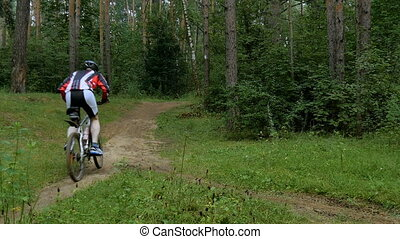 Cyclist rides through the forest, overcoming obstacles.