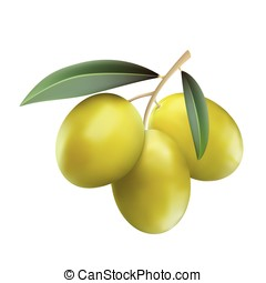Green olives with leaves isolaten on white background, realistic vector illustration