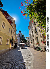 Cobbled old street and church of Ljubljana vertical view,...