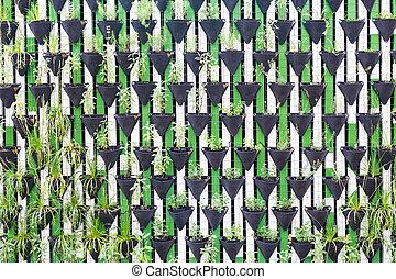 Vertical garden as a green wall. - Vertical garden as a...
