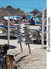 BBQ sardines on Fuengirola beach - Sardines cooking in a...