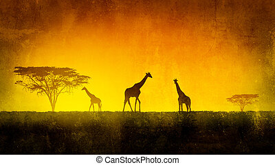 African Landscape - African landscape flora and fauna in...