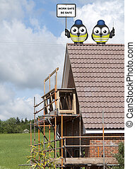 Construction workers perched on a roof - Comical bird...