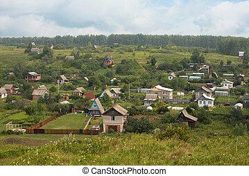 rural landscape at summer day