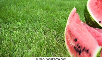 sliced watermelon on grass - sliced watermelon on green...