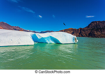 The white-blue ice floe drifts from coastal glacier - Huge...