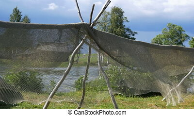 Fishing net drying in the wind on stakes on drying ground. -...