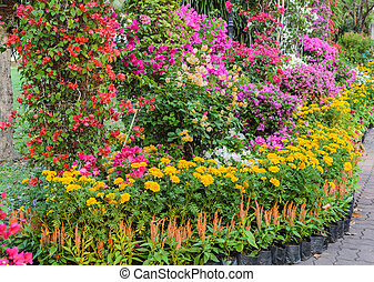 Colorful decorated flower garden