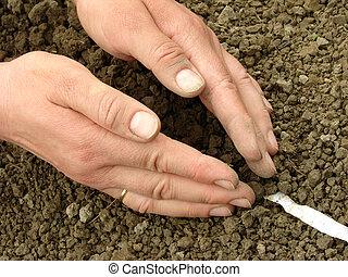 semear, Sementes, fita