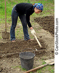 spring gardening - preparing vegetable bed for planting at...