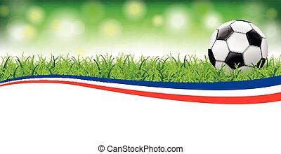 Football Grass Bokeh Header France