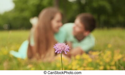 Guy and girl lying on the grass on the lawn. In the foreground purple flower.