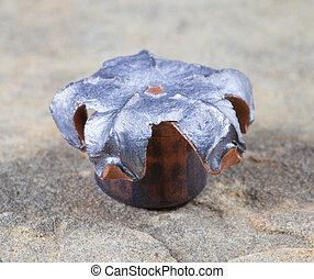 nine millimeter - Nine millimeter hollow point bullet...
