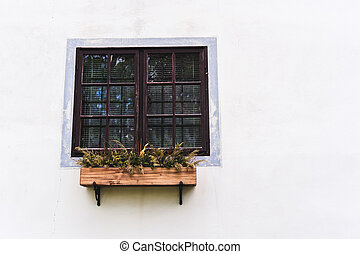 window with the tray of flowers on a light wall