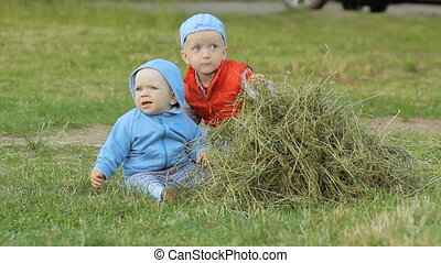 2 boys to play with each other and hay. One less than a...