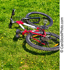 City bicycle on green grass . No people. - City bicycle...