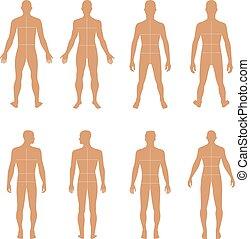 Full length front, back man silhouette vector illustration...