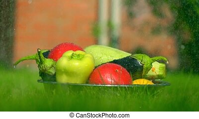 Different vegetables in the grass and falling water drops,...