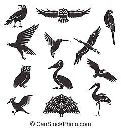 Conjunto, iconos, estilizado, Siluetas, negro, Aves