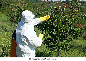 Pesticide spraying - Man spraying toxic pesticides or...