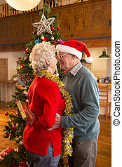 Romantic Christmas Couple - Elderly couple at Christmas. The...
