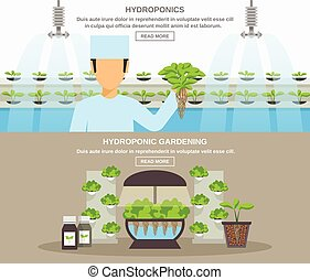 Hydroponic Design Illustration