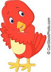 Cute red bird cartoon