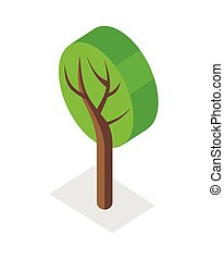 Tree Illustration in Isometric Projection.