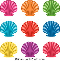 vector colorful set of of ocean shell icons
