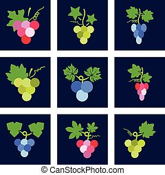 vector colorful icons of grapes
