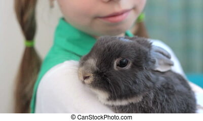 Little cute rabbit on girl's hands - Close-up of adorable...