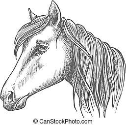 Riding horse head sketch for equine sport design - Riding...