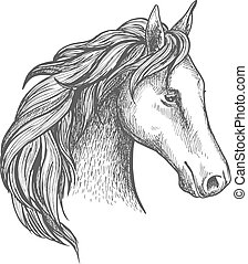 Sketched horse head icon of arabian stallion - Sketched...