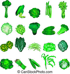 Green Veggies - Vector Illustration of 20 green vegetable...