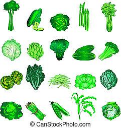 Green Veggies - Vector Illustration of 20 green vegetable...