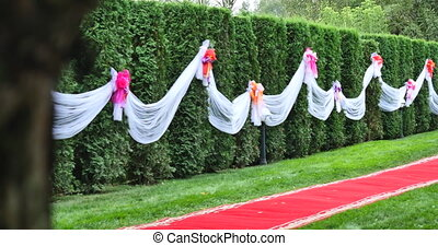 red carpet on the green grass. decorated evergreen tree in the background. decorations wedding ceremony.