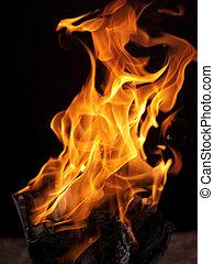 fire texture - Fire texture