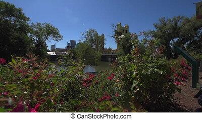Sacramento California Promenade River Walk - Flowers and...