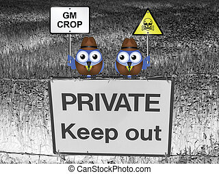 Genetically modified crop - Farmers with different views...