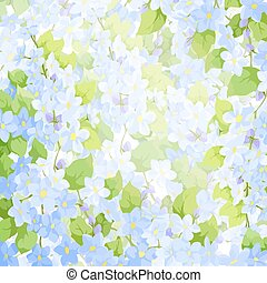 forget me not background - Bright colorful forget me not...