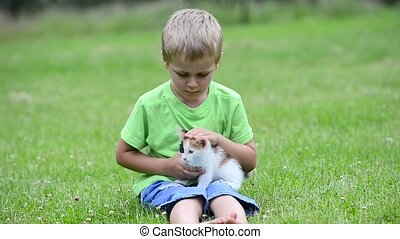 boy playing with kitten