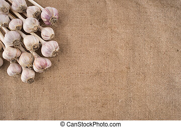 Bunch of garlic bulbs on a burlap