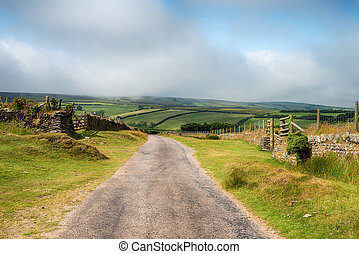 Country Lane on Exmoor - A country lane on Exmoor National...