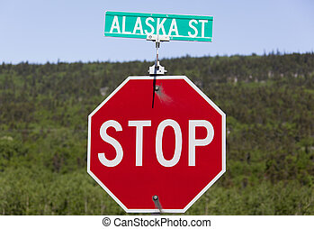 Alaska Street - The road sign with a name of a street in...