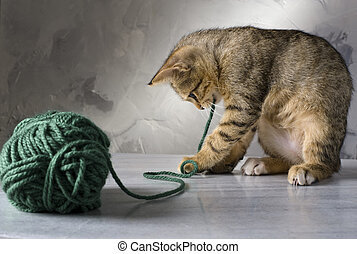kitten playing with a green wool ball on a marble surface...