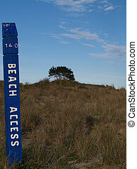Beach access sign. - Beach access sign with tree in...